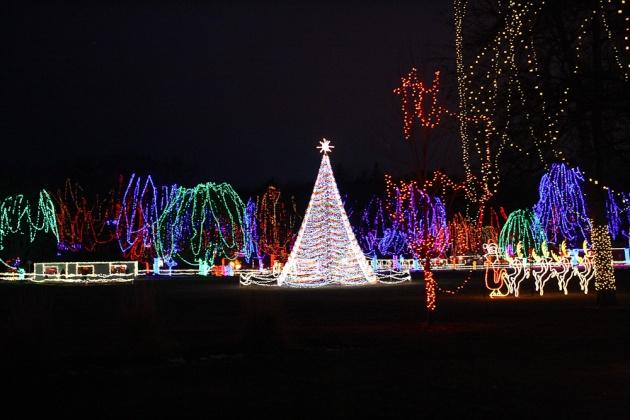 lights 2
