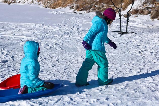 sled-1